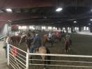 Lander Old Timers Rodeo